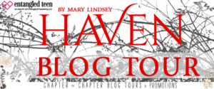 #Giveaway Interview Haven by Mary Lindsey @MaryL_MarissaC @EntangledTeen 12.2