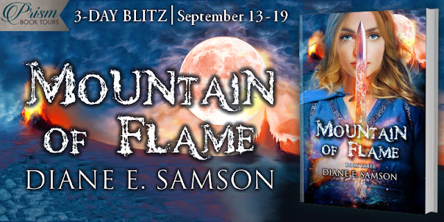 Gems of Fire and Valley of Bones by Diane E. Samson, a $25 Amazon gift card, three gem necklaces, and bookmarks